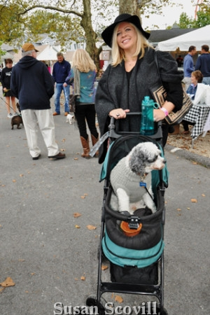 12. Kathleen Keneally brought Jasper, her well-behaved Cock-a-poo who loved riding in this baby carriage.