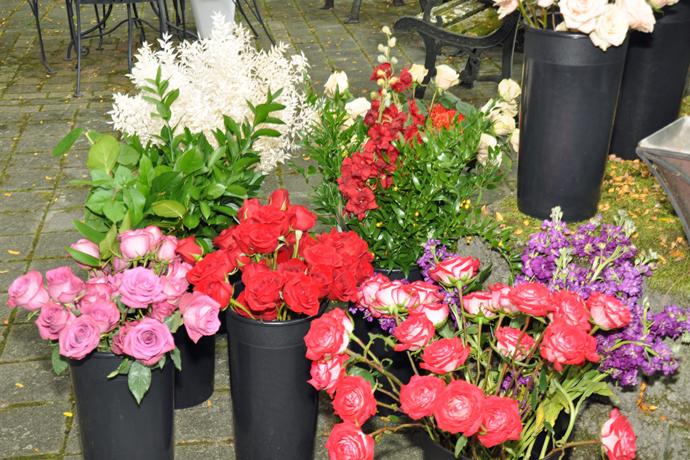 FLOWERS_WAYNEbb002.JPG